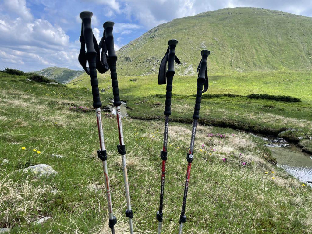 Bețe de trekking Black Diamond 10 ani